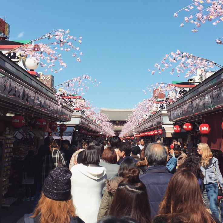 Asakusa is extremely touristy but definitely worth a visit, so much to see there