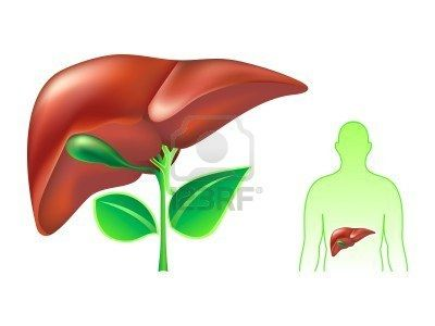 SGOT, also referred to as AST, is an important liver enzyme in both terms of function and also in diagnosis of liver damage and complications.   http://liverbasics.com/sgot.html Bile Stones In Liver...