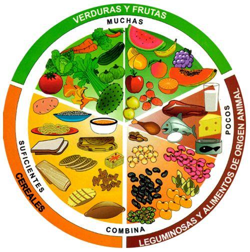 Conoce el plato del buen comer y como balancear tus comidas para tener un cuerpo fuerte y sano, Ademas evita enfermedades como el diabetes y otras