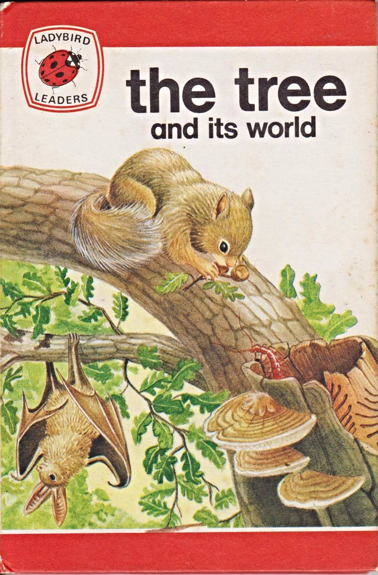 the-tree-its-world-vintage-ladybird-book-leaders-series-737-matte-hardback-1975-6223-p.png (1159×1764)
