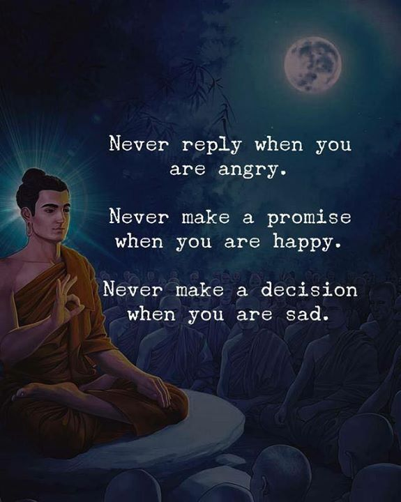Never Reply When You Are Angry Positive Vibes Quotes Angry Quote Vibe Quote