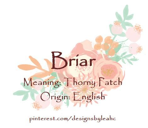 Baby Girl Name: Briar. | Meaning: Thorny Patch. | Origin ...