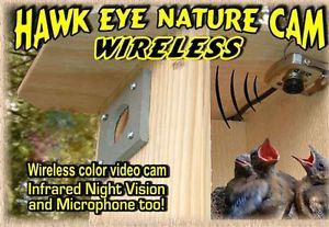 Birdhouse-Spy-Cam-BCAMHEW-Hawk-Eye-Wireless-Spy-Camera-Set-of-1