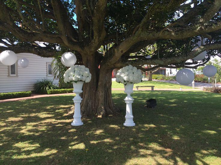 Ceremony under the tree