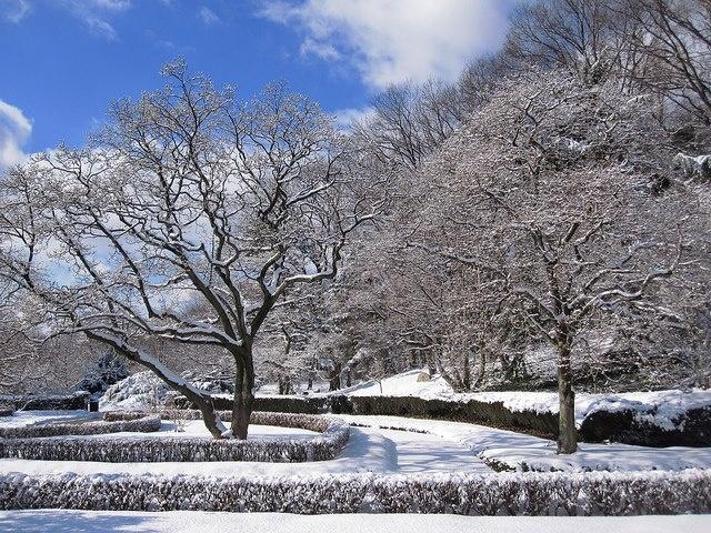 134 Best Arboretum Images On Pinterest Winter Winter Landscape And Winter Scenes