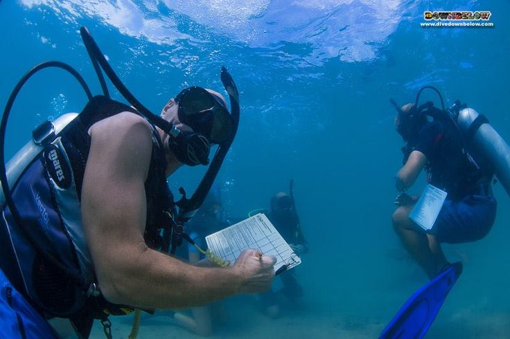 Richard assesses Dominik's hovering skills in the confined water environment..