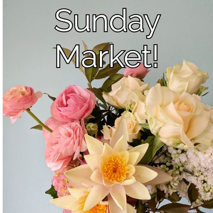 Team Chinaclay will be spending tomorrow (Sunday 22nd) up the road at St Anthony's School for their Spring Fair! Come by from 11-3 for a beautiful bunch of market fresh flowers or a cute pot plant. If you had your heart set on ceramics no problem. Just give us a call on 0404447971 and one of us will pop down the road and open up for you. Bon weekend!  58 Arden St Clovelly  #chinaclay #clovelly #australianceramics #functionalceramics #ceramicsgallery #flowers #florist #springfair…