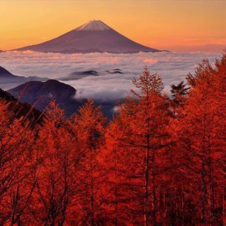 Mt. Fuji in autumn, Japan