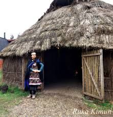 ruca mapuche - Buscar con Google