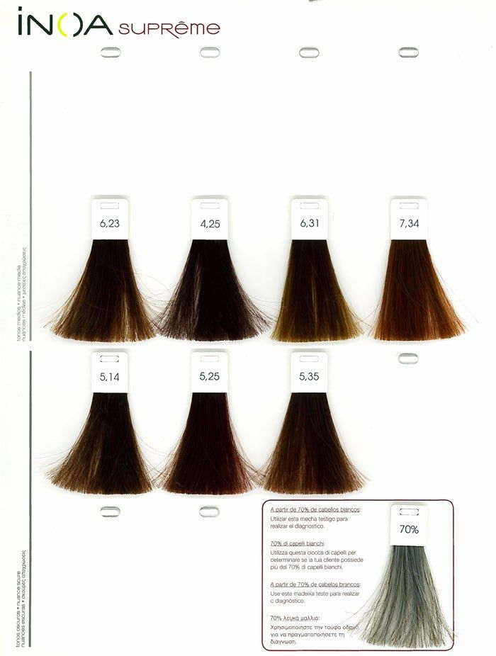 Loreal Inoa Supreme Color Chart L Oreal Professionnel Inoa Ods2 Shade Chart Loreal Hair Color Blonde Hair Color Chart Color Chart