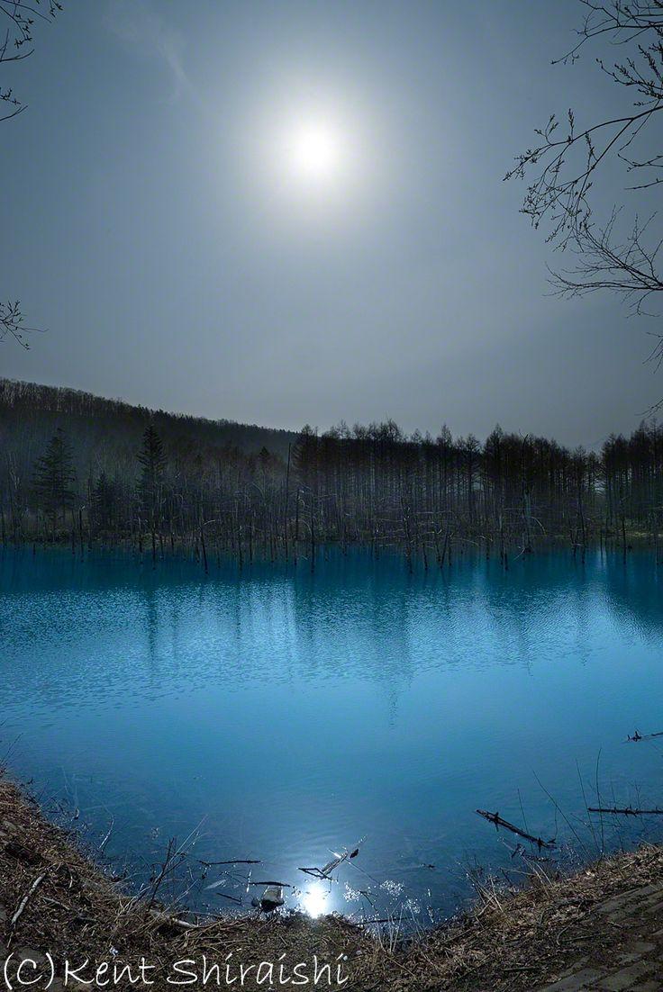 今朝の青い池 北海道美瑛町