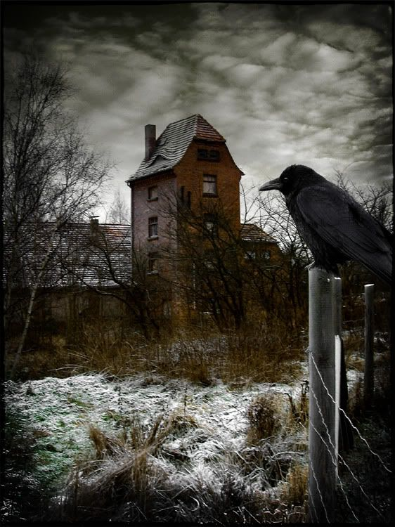 seems like this has to be a collage photo...its just such a perfect setting with the crow and the creepy house and the sky