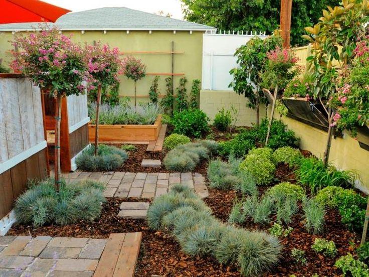 sur le thème Plantes Ornementales sur Pinterest  Pelouses, Plantes ...