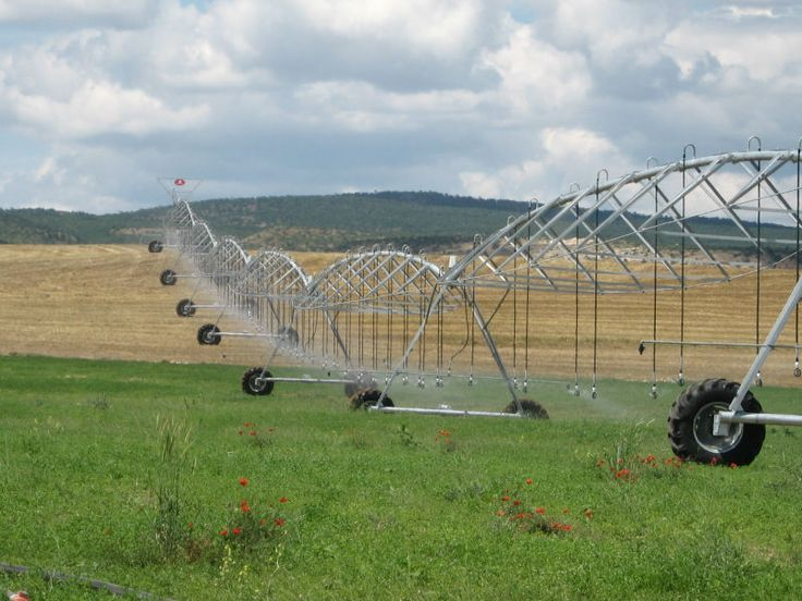 The 25 Best Automatic Irrigation System Ideas On