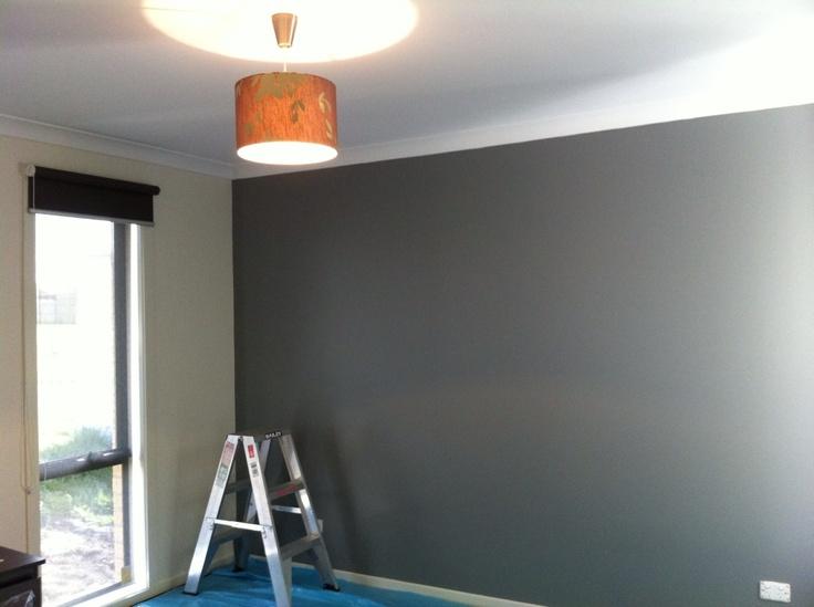 Dulux Timeless grey Splashback colour