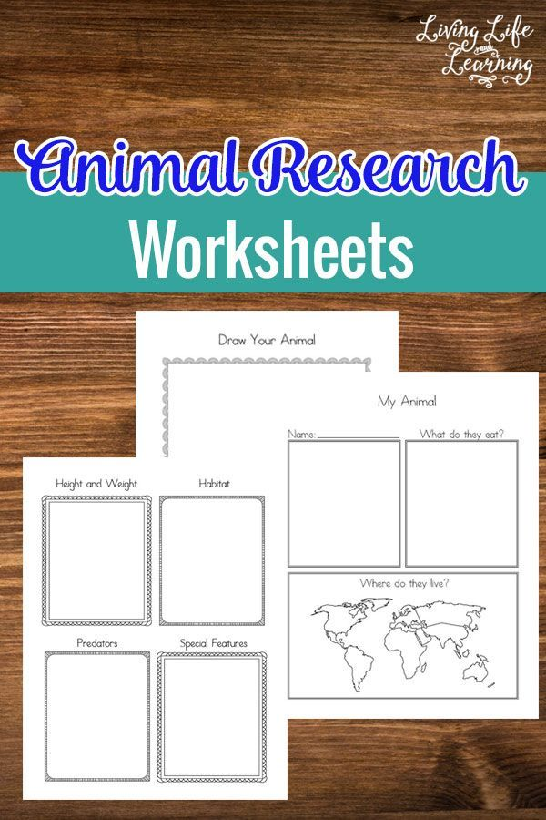520 best Animals Activities for kids images on Pinterest ...