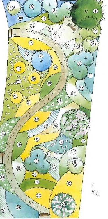 Beautiful colour blocking garden plan of a blue, yellow and white colour themed…
