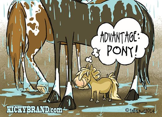 On Horse Nation >> A Comic to Kick Off Your Week  Need a little comic relief ? You'll get a kick out of this Kellie Lewis' latest comic!