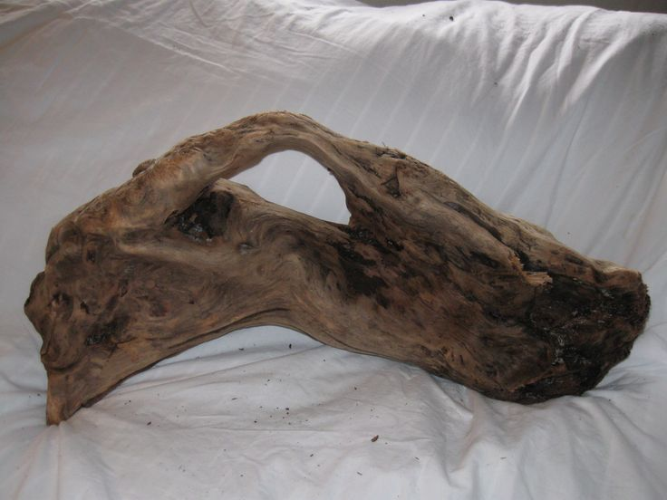 Large Driftwood Pieces For Sale | ... Handle [D8] - $110.00 : Buy driftwood for sale, Buy driftwood for sale