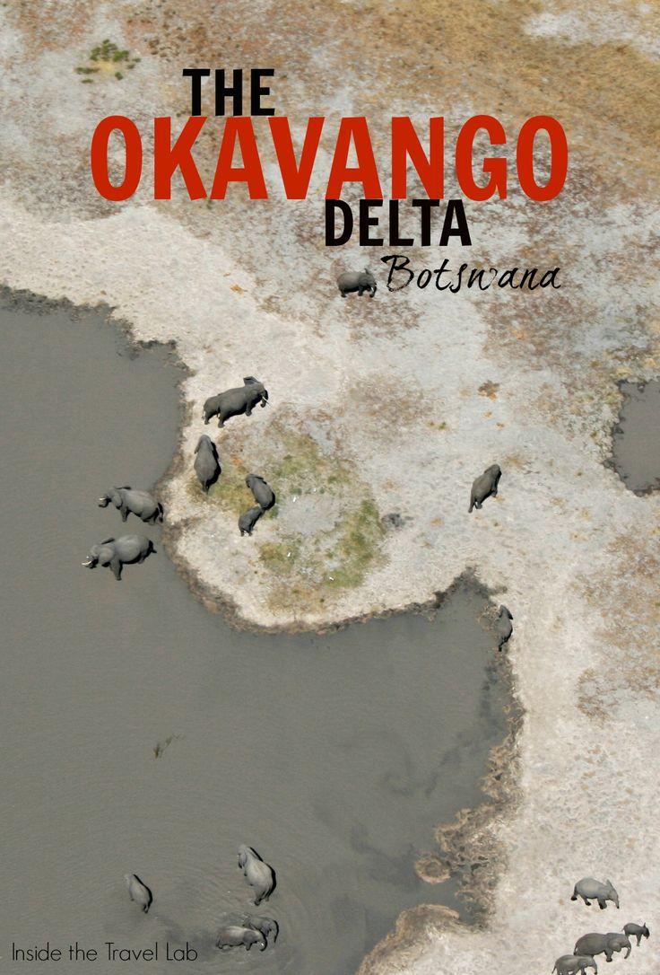 A wildlife safari in Botswana's Okavango Delta with @insidetravellab http://www.insidethetravellab.com/okavango-delta-safari-botswana/