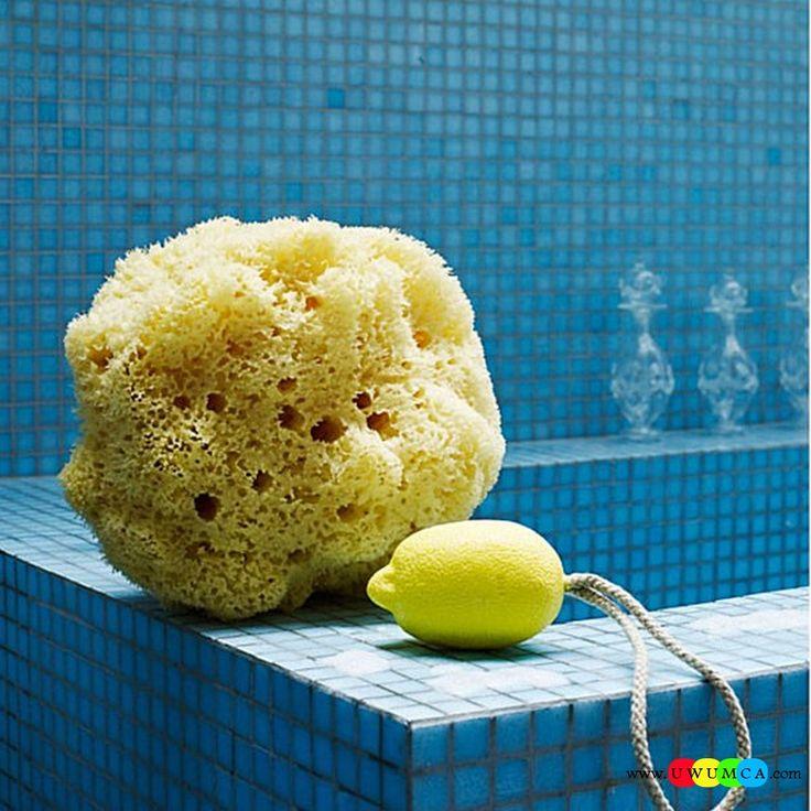 58 Best Cool And Cozy Summer Bathroom Style Modern Seasonal Decor Ideas Images On Pinterest