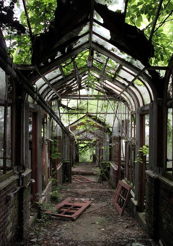 Greenhouse Hallway 2 by Curious Expeditions on Flickr. Just off Route 9 in Yonkers, a half-hour drive north of New York City, the Boyce Thompson Institute is an abandoned agricultural institute where the plants have gone wild. The institute was founded by mining magnate Boyce Thompson and opened its doors in 1924 with the goal of studying plants - abandoned in 1978. #urbex #abandoned