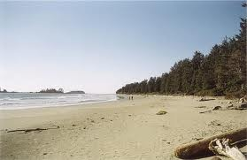 Tofino,BC, I lived there for 4 years