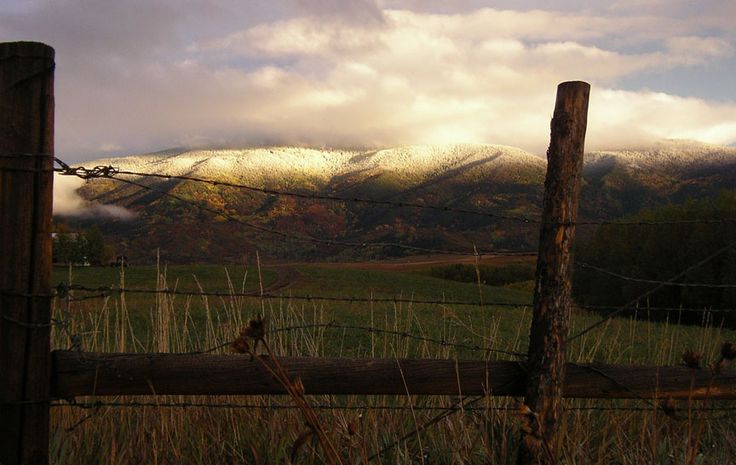 Fenceline and snowline. Steamboat Springs, Colorado.