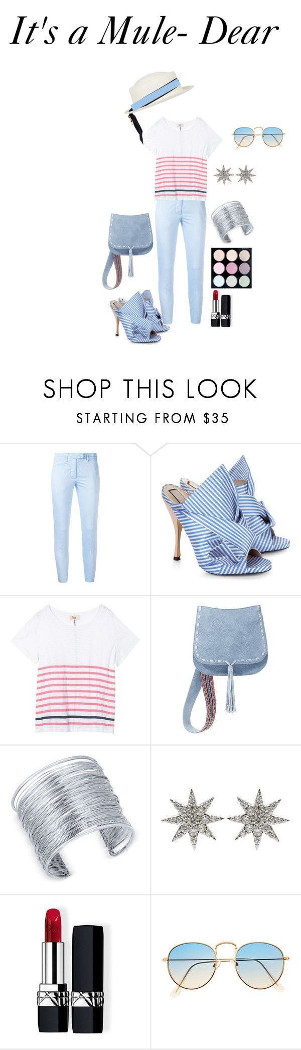 """""""No. 21 Blue and White Mule Shoes"""" by scoutmass on Polyvore featuring Dondup, N°21, Hush, Steve Madden, INC International Concepts, Bee Goddess, Christian Dior and Federica Moretti"""