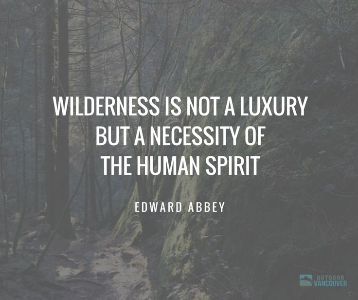 Images Of Nature With Quotes For Facebook: 62 Best Images About Nature Quotes On Pinterest