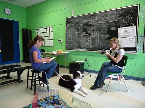 La zoothérapie dans les écoles!  http://www.csaffluents.qc.ca/spip.php?article1184