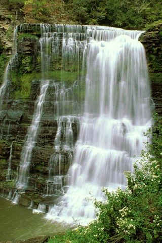 Burgess Falls Tennessee USA. My baby and i hiked here on a trip and it's a must to see again. The best part was being sharing one of God's glories with him!