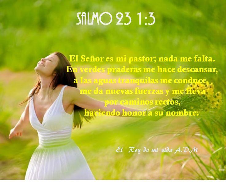 Salmo 23 1:3 El Señor es mi pastor; nada me falta. En verdes praderas me hace descansar, a las aguas tranquilas me conduce,  me da nuevas fuerzas y me lleva  por caminos rectos,  haciendo honor a su nombre.