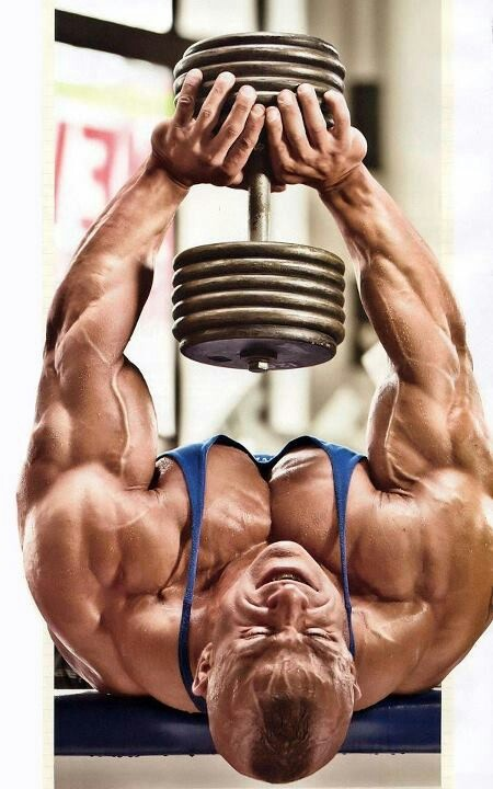 Pin by Rufus RedWolf on Gymspiration | Pinterest | Bodybuilding, Fitness and Bodybuilding workouts
