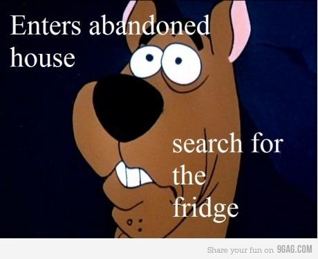 Search the fridge!