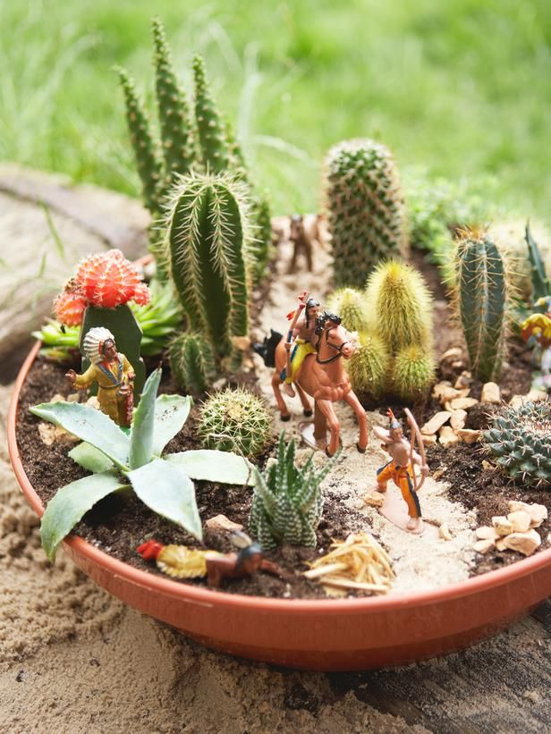 How to Plant a Cactus Container Garden | Yee-haw! Turn a container into a desert landscape by filling it with prickly cacti and other succulent plants. | Excerpted from Ready, Set, Grow! by DK Books | Cacti, Container Gardening, How To, Succulents, Gardening
