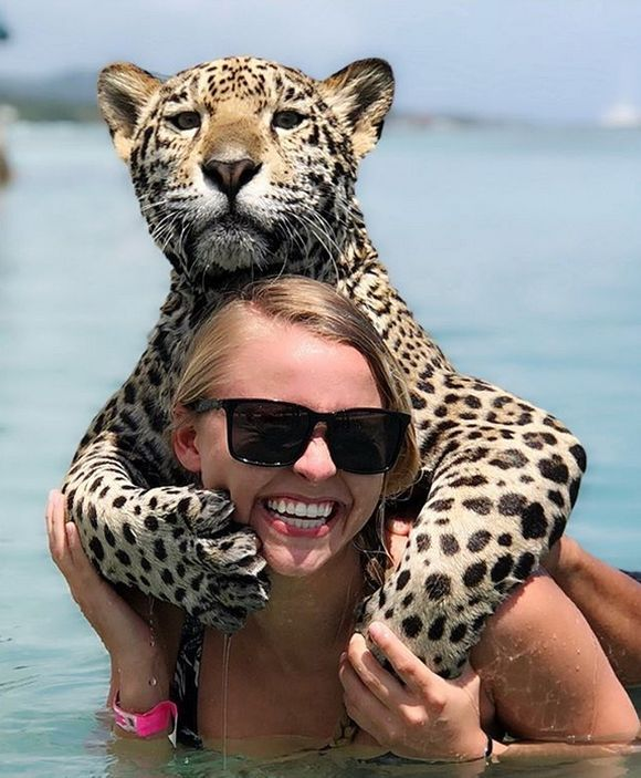 Vacation With Jaguars (12 Pics)