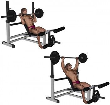 Body new look musculation pectoraux d velopp inclin exercices musculation fitness - Developpe incline avec halteres ...