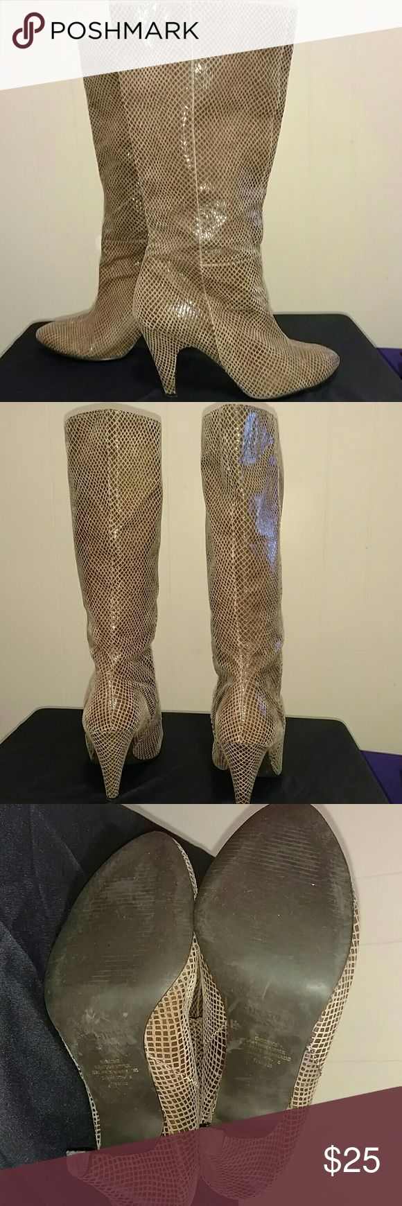 Genuine Leather Snakeskin print boots Genuine Leather Snakeskin print boots I'm excellent used condition. Beautiful boots with lots of life left. No box. Colin Stuart Shoes Ankle Boots & Booties