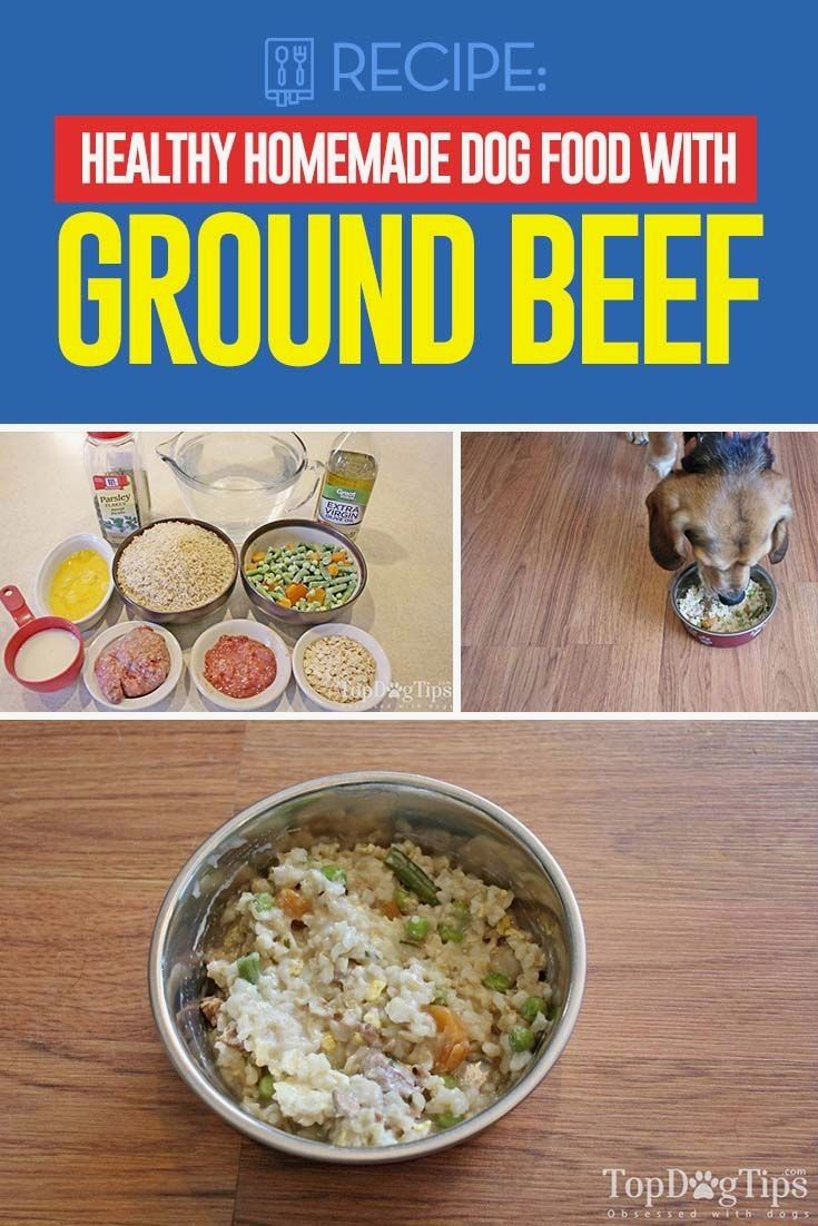 Ground Beef Is Often Used As The Protein Source In Homemade Dog Food Recipes It Is Affordable And Very Dog Food Recipes Healthy Dog Food Recipes Make Dog Food
