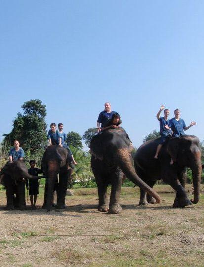 Elephant Trekking in Chiang Mai, Thailand  #travel #honeymoon