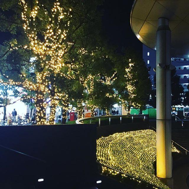 2016/11/13 20:28:48 iepilates_movement 今年の用賀駅北口のイルミネーション^ ^ ここからスタジオまでがスグなので、毎日通る場所ですが、街に灯りがあるだけで何だかホッコリと心が安らぎますよね〜☆用賀の街も人も大好きです! 昨年までのブルーの灯りより、私はこちらの暖色系の灯りが好きだなー(^^)♡ 寒空の下でも暖かく感じるね〜、、 #用賀駅 プチ#イルミネーション #灯り #寒空 の下でも#暖かい #綺麗 #ほっこり #癒し #ピラティス #ピラティススタジオ #パーソナルトレーナー #プライベートレッスン #トレーニング #用賀 #二子玉川 #桜新町 #健康  #健康