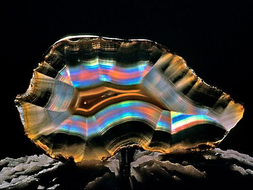 Rock and Mineral Photography//iris agate on shell