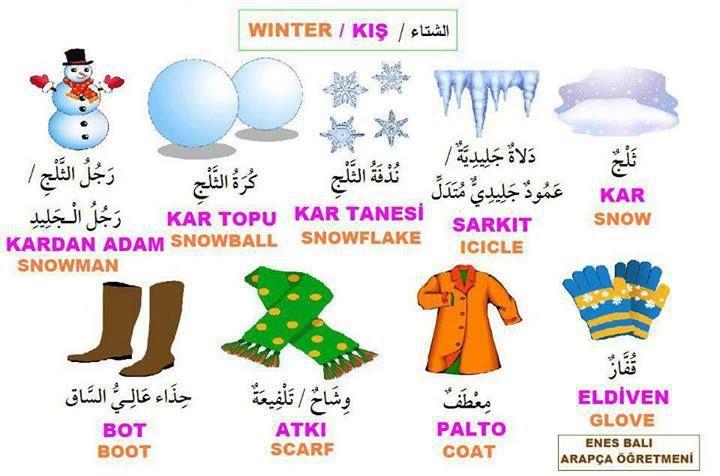 teach me how to love turkish series