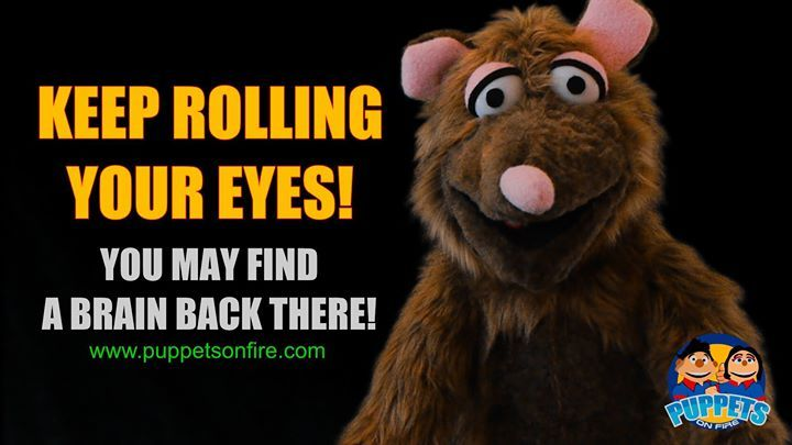 Keep rolling your eyes! #rollingeyes #funnymemes #meme #joke #oneliner #puppet #funnypuppets http://ift.tt/2mGYExL