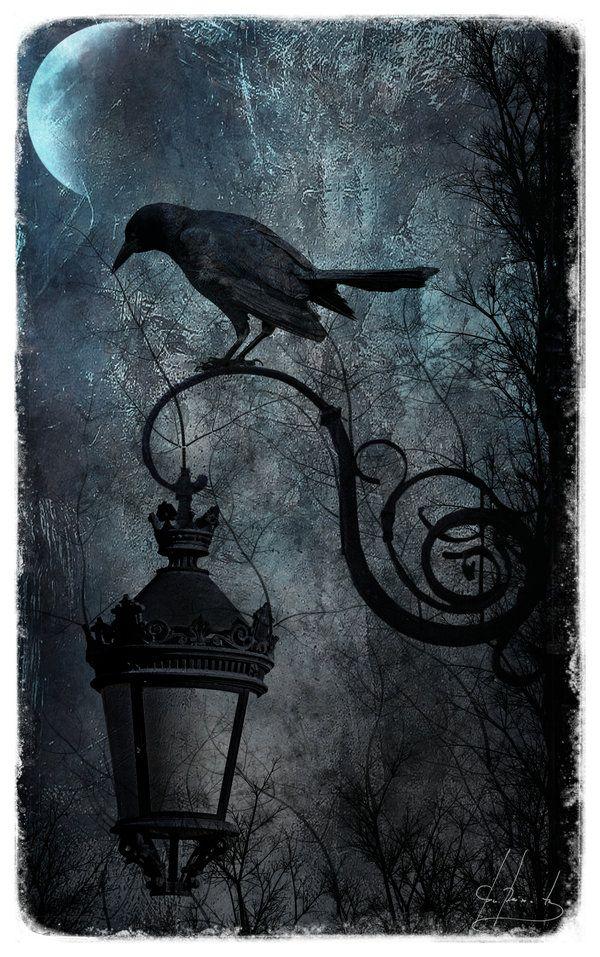 Poe - Nevermore -  « Une fois, sur le minuit lugubre, pendant que je méditais, faible et fatigué, sur maint précieux et curieux volume d'une doctrine oubliée, pendant que je donnais de la tête, presque assoupi, soudain il se fit un tapotement, comme de quelqu'un frappant doucement, frappant à la porte de ma chambre. « C'est quelque visiteur, — murmurai-je, — qui frappe à la porte de ma chambre ; ce n'est que cela, et rien de plus. »