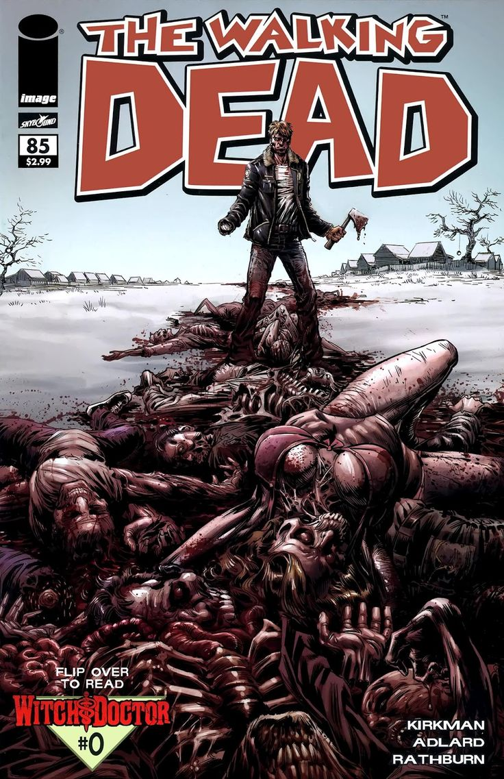 The Walking Dead Comic Book Characters | The Walking Dead Comics