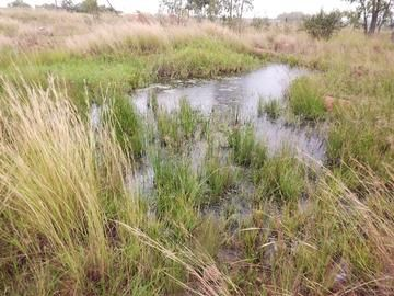 Vaccant land on the River For Sale, 10 Ha - ad image This property is situated in Pretoria North in Lusthof and consists of the following:  This property is 10 ha and Eskom power is next to the road. Part of the soil is good for planting veggies and crops and part of the land can be used for grazing. The property does have an excellent view over the area and borders the river. Not to be missed!!!!