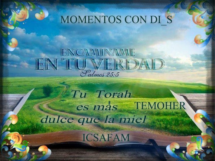 Fotogalería :: MOMENTOS CON DI_S