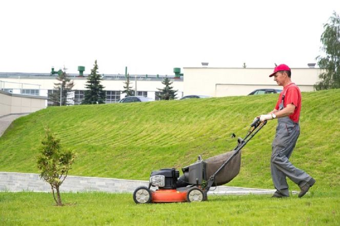 Top 4 Tips To Select The Best Landscape Gardeners Within Budget |  Commercial lawn mowers, Cool landscapes, Landscape design